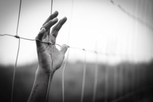 Young hand reaching through barb wire fence